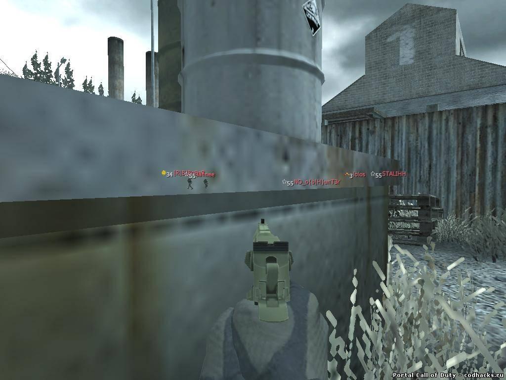 Руководство запуска Call of Duty World at War CoD WaW